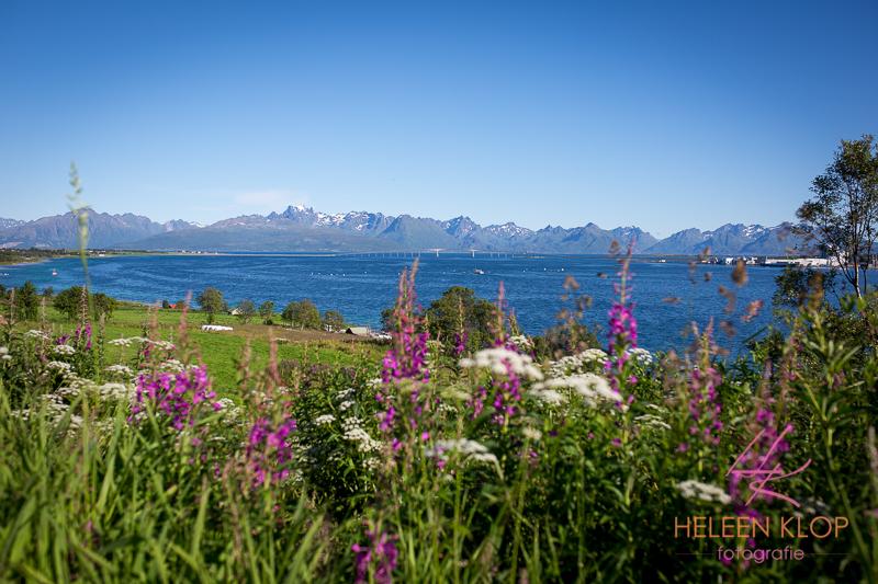 266 Noorwegen 3873 LR