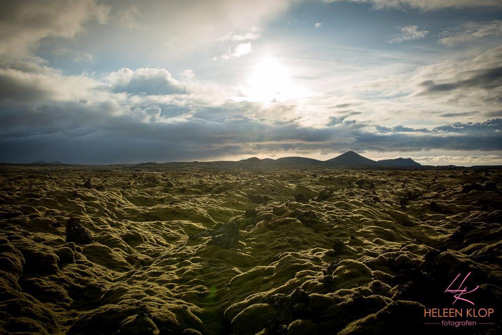 Moslandschap IJsland