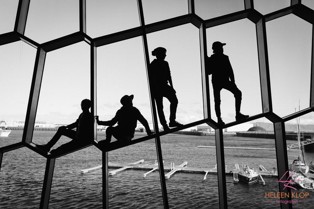Harpa windows Reykjavik
