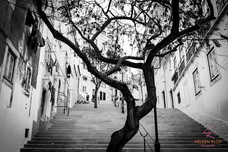 Citytrip Lissabon 060