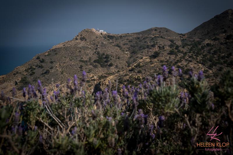 Natuur rond Altea Spanje