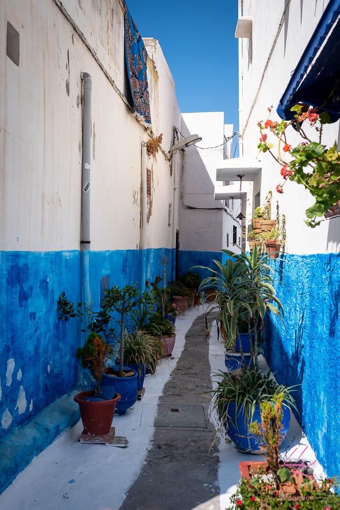 Blauw met wit in de Medina Rabat
