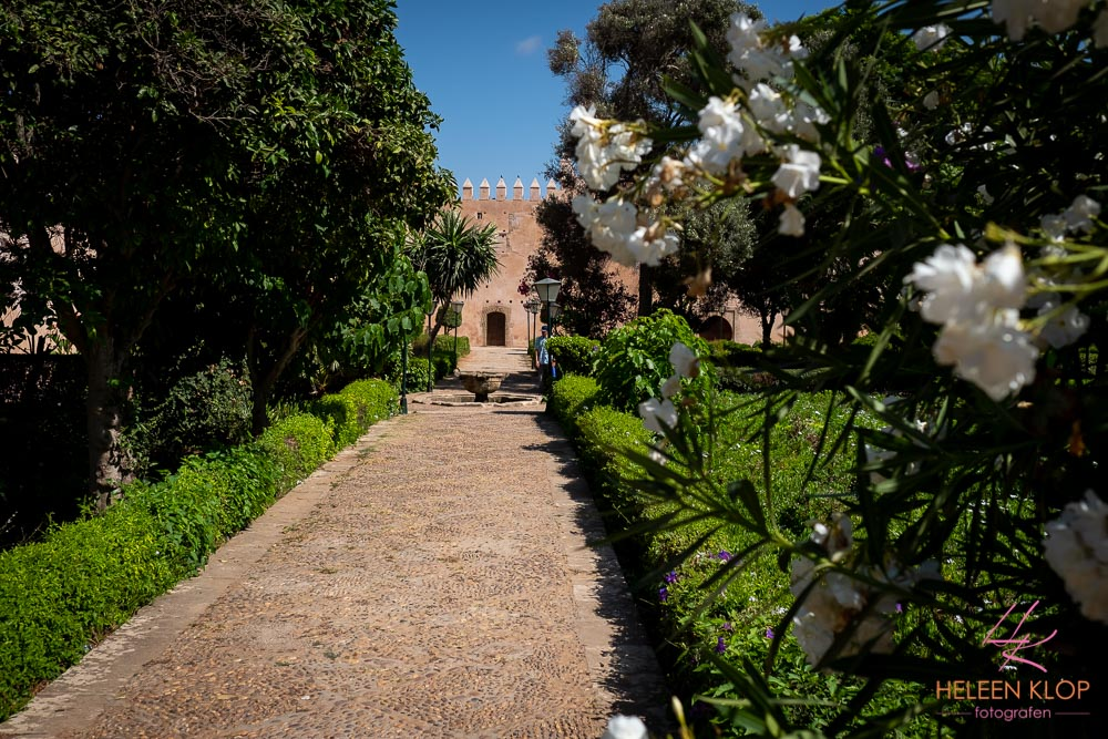 Binnentuin Rabat