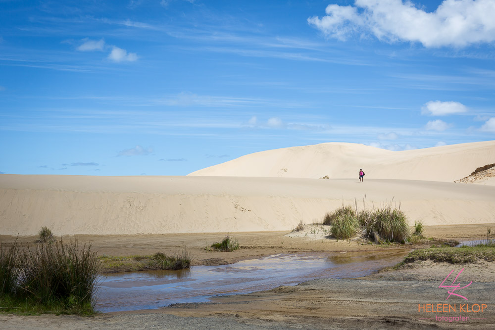 Cape Reinga Sand dunes