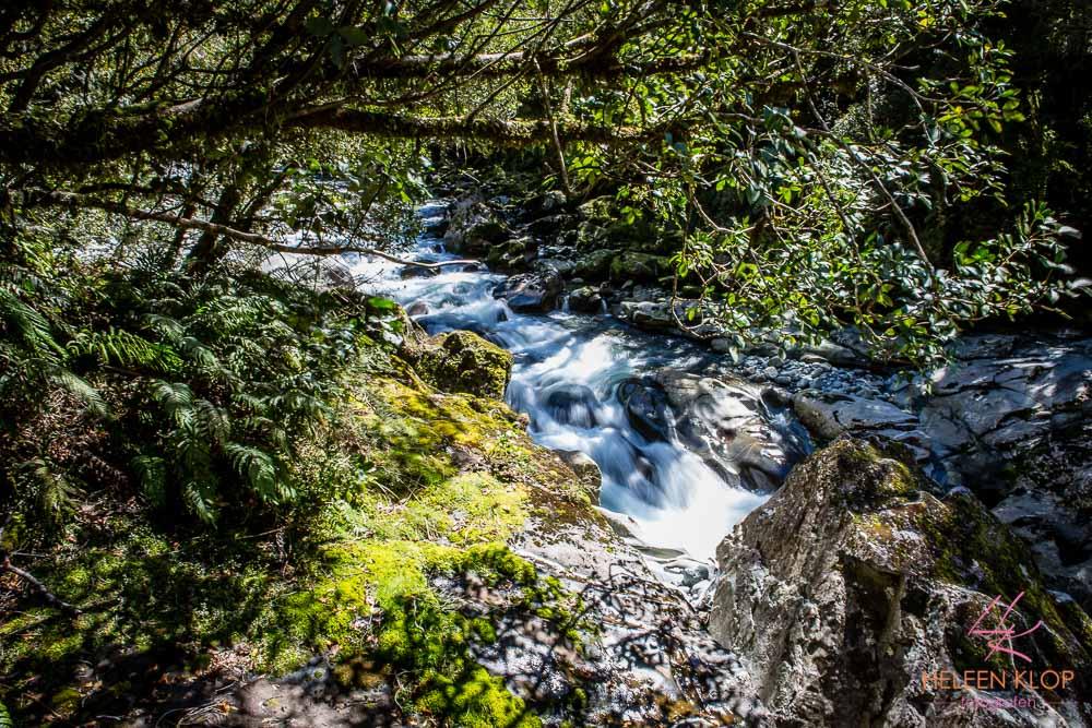 Milford Sound 018