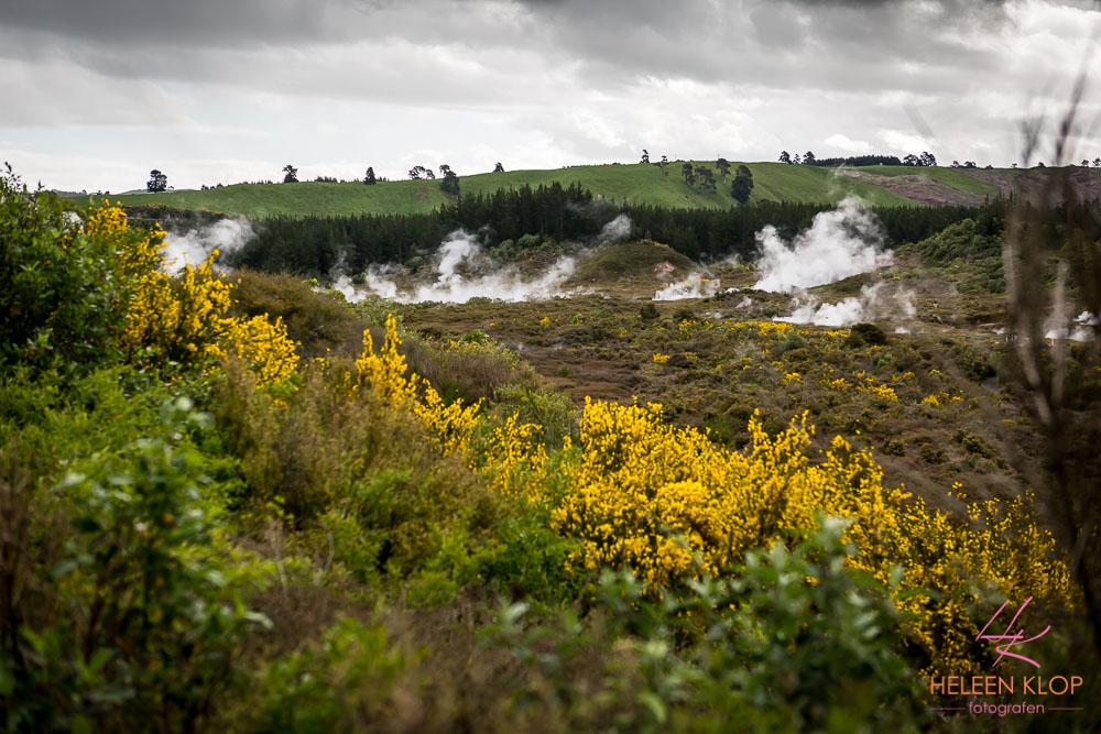 Vulkanische activiteit