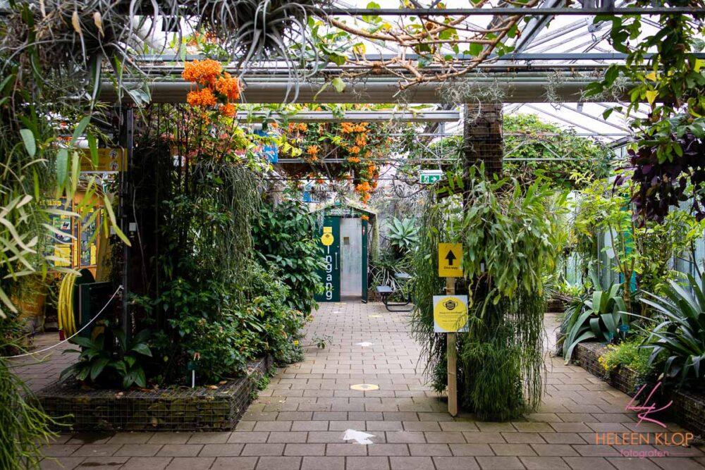 Trouwen Bij Botanische Tuinen Utrecht