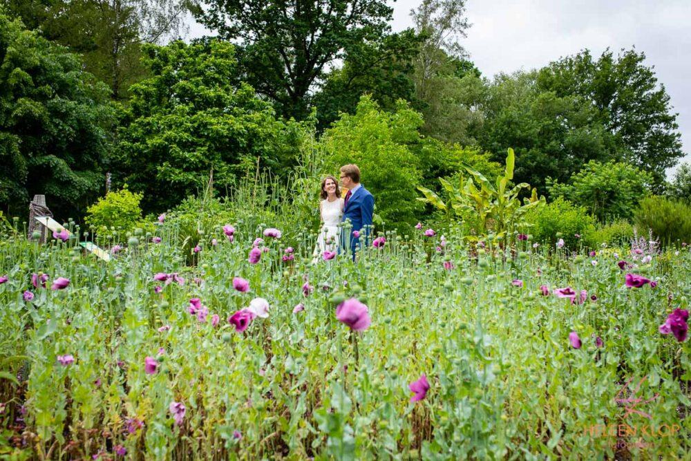 Bruidspaar Bij Klaprozen Botanische Tuinen Utrecht